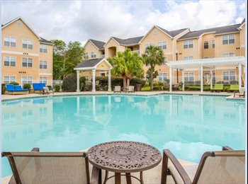 EasyRoommate US - Free rent to move in! Furnished!, Lafayette - $419 pm