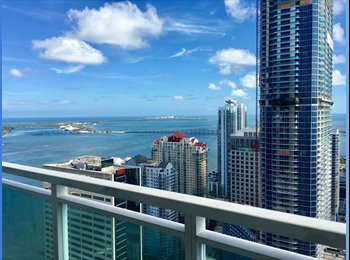 EasyRoommate US - New Waterfront 46th Floor Brickell Apartment, Roommate Needed!, Miami - $1,400 pm