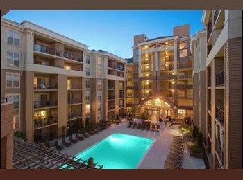 EasyRoommate US - Shirlington Village Apartment - 1 Roommate needed, Shirlington - $1,200 pm