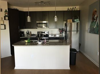 EasyRoommate US - Beautiful 2/2 room for rent , University - $740 pm