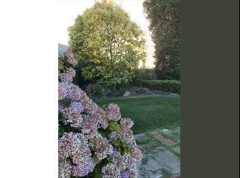 EasyRoommate US - Well lit room looking out on a large back yard. Located near SR downtown., Santa Rosa - $700 pm