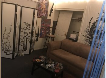 EasyRoommate US - Cheap Room for rent, Downtown - $375 pm