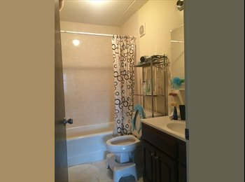 EasyRoommate US - 2 bed/1 bath apartment looking for one roommate, Arlington - $1,100 pm
