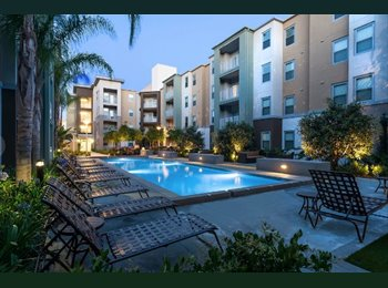 EasyRoommate US - UH Fullerton housing, One of the last rooms available, Placentia - $980 pm