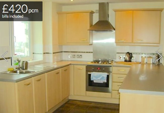 Room to rent in Erdington - 1 double room in modern 2 bed apartment - Image 2