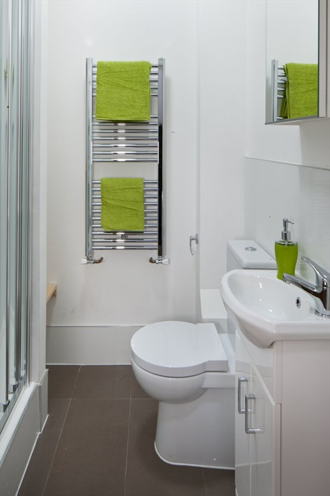 Room to rent in Finsbury Park - SHORT-TERM LETS FOR STUDENTS/PROFFRESIONALS/VISITS - Image 3