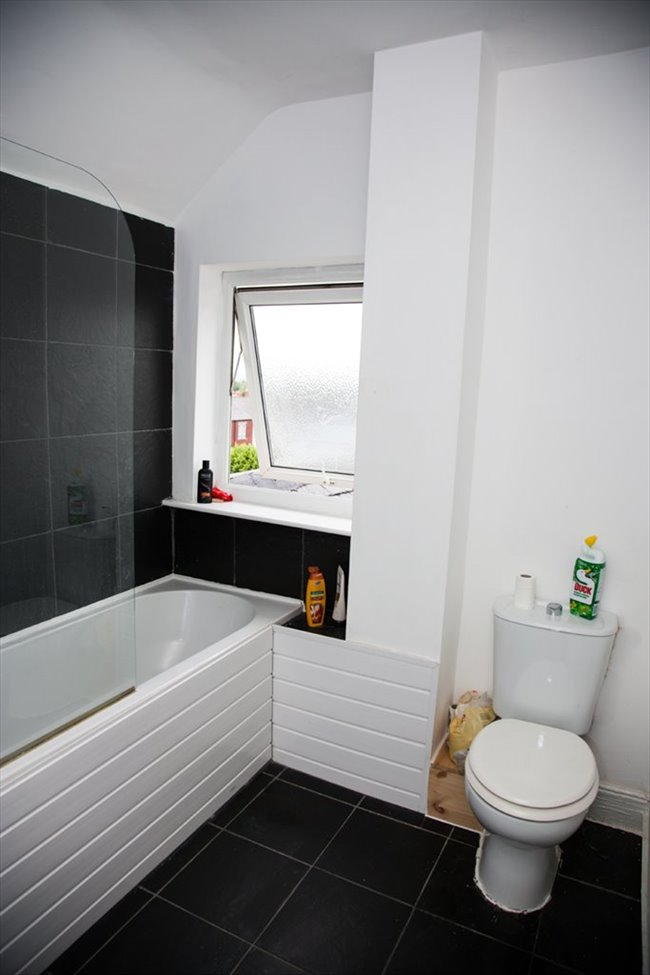 Room to rent in South Shields - Rooms to Rent in South Shields! £60-90 a room per week! - Image 7