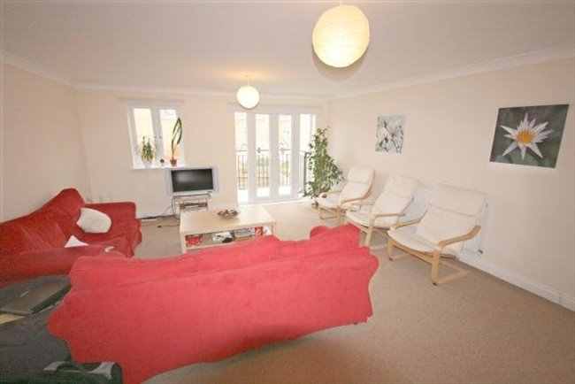Room to rent in Peterborough - Huge Ensuite  25min walk to town - Image 2