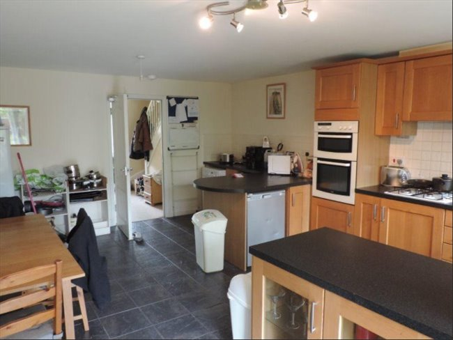 Room to rent in Peterborough - Huge Ensuite  25min walk to town - Image 3