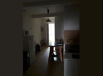 Appartager FR - Colocation appartement centre montpellier, Montpellier - 250 € /Mois