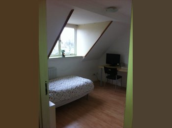 EasyKamer NL - Zeer leuke gemeubileerde kamer te huur., Eindhoven - € 375 p.m.
