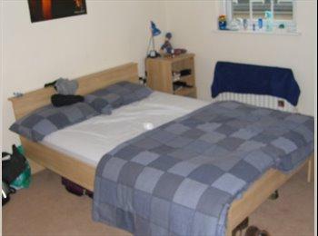 EasyRoommate UK - Modern 4 Bedroom Town House In Fenham Area Of Newcastle (NE46XH), Benwell - £303 pcm