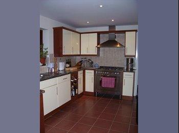 EasyRoommate UK - Prof. house lovely spacious double ensuite room, Mon - Fri only, Milton Keynes - £350 pcm
