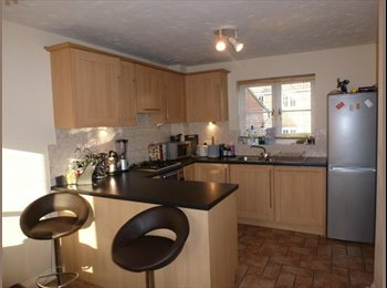 EasyRoommate UK - Spacious room in a very nice house and quiet area, Milton Keynes - £550 pcm