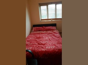 EasyRoommate UK - Room for rent, New Eltham - £650 pcm