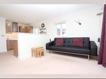 EasyRoommate UK - Two Bedroom executive apartment - fully furnished, Newbury - £800 pcm