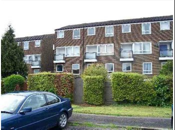 EasyRoommate UK - 4 Bed Student House located close to University, Hatfield - £375 pcm