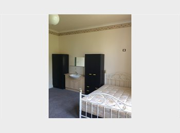 EasyRoommate UK - Various types of good accommodations, Dingle - £433 pcm