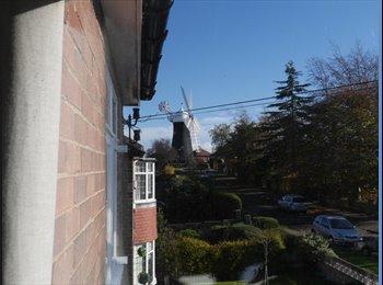 EasyRoommate UK - Double bedroom in Semi Detached House nr Windmill., York - £550 pcm