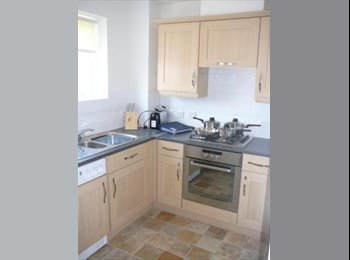 EasyRoommate UK - Double room close to waterfront, Ipswich - £380 pcm