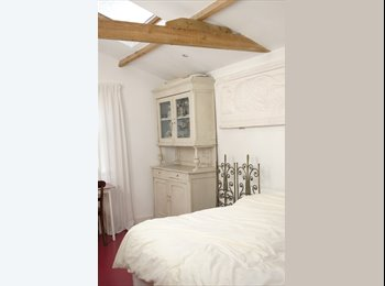 EasyRoommate UK - Beautiful unusual room with roof lights, Stockwell - £800 pcm