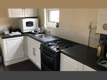 EasyRoommate UK - Great Large Double Rooms In All Inclusive Flatshare Fenham , Benwell - £336 pcm
