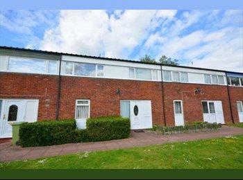 EasyRoommate UK - Double Room In Greenleys, Milton Keynes - £520 pcm