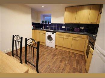 EasyRoommate UK - Fantastic professional house share in Headingley £395pcm including bills, Headingley - £395 pcm
