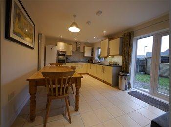 EasyRoommate UK - Professional House Share, St Thomas, Exeter, Exeter - £550 pcm
