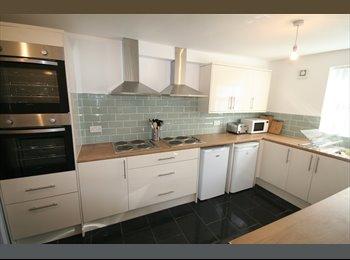 EasyRoommate UK - Ensuite room in fully refurbished house, Kensington - £400 pcm