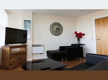 EasyRoommate UK - Stunning rooms to rent in South Shields, South Shields - £420 pcm