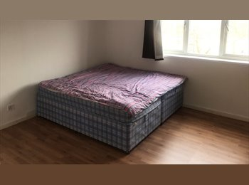 EasyRoommate UK - Student rooms to let , Park Dale - £300 pcm