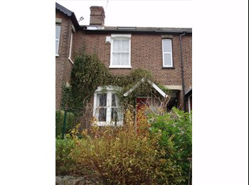 EasyRoommate UK - Large double room walking distance from Eden Ctr, High Wycombe - £450 pcm
