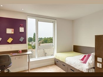 EasyRoommate UK - STUDENT ENSUITE DOUBLE BEDROOM *NO DEPOSIT*, Kingston upon Thames - £820 pcm