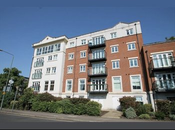 EasyRoommate UK - Flat to rent in chic appartment complex, Widmore - £675 pcm