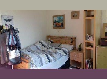 EasyRoommate UK - Large room to rent, Headingley - £365 pcm