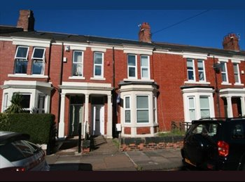 EasyRoommate UK - ANYINE LOOKING FOR A ROOM??!!, Jesmond - £377 pcm
