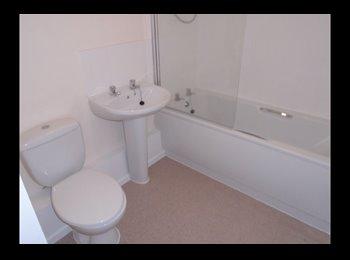 EasyRoommate UK - Room in quiet and nice neighboorhod, Beechdale - £450 pcm