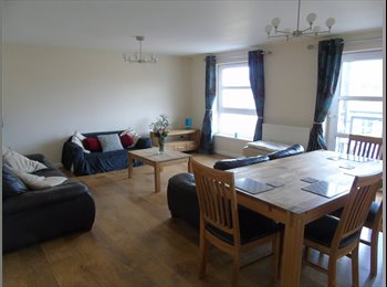 EasyRoommate UK - Two Double Bedrooms in Shared Flat , Aberdeen - £450 pcm