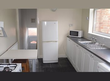 EasyRoommate UK - NOT FLATSHARE BUT ENTIRE 2 BEDROOM PROPERTY TO RENT, Benwell - £540 pcm