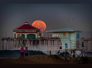 EasyRoommate US - Do you want to Hear & Smell the Ocean at Night!, Huntington Beach - $1,100 pm