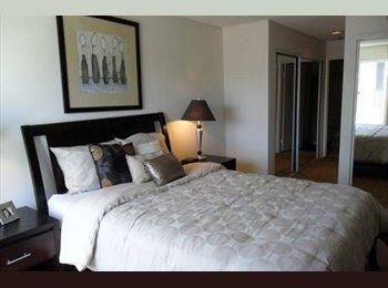 EasyRoommate US - Seeking relaxed roommate for UTC apartment, La Jolla Heights - $1,150 pm