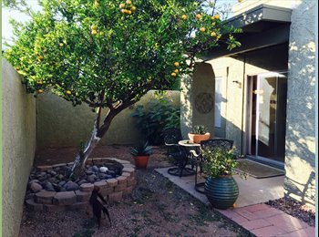 EasyRoommate US - Beautiful 3 bedroom, 2 bath townhome 1 1/2 miles away from UofA, Mountain View - $500 pm