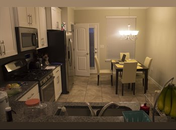 EasyRoommate US - Brand New, Spacious Townhome, Utilities included, Jollyville - $800 pm