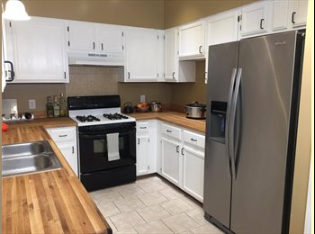 EasyRoommate US - Awesome Room for Rent, Wells Branch - $600 pm