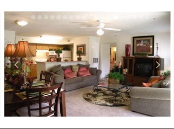 EasyRoommate US - Looking for one fun roommate, Tallahassee - $450 pm