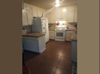 EasyRoommate US - Single mom looking for roommate!, Olmos Park - $450 pm