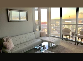 EasyRoommate US - HIGHRISE * FOR RENT * DOWNTOWN* LAKE EOLA, Orlando - $1,115 pm