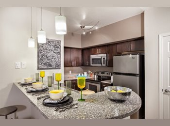 EasyRoommate US - I always have chocolate chip cookies in the pantry. , Green Valley - $500 pm