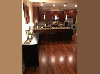 EasyRoommate US - Luxurious Condo in Edgewater Glen to Share with Professional, Edgewater Glen - $1,150 pm